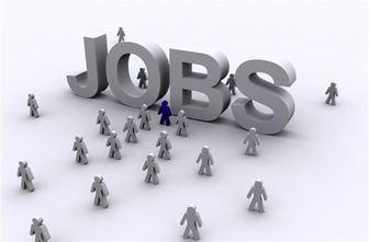 رسته شغلی در اصطلاحات کسب و کار
