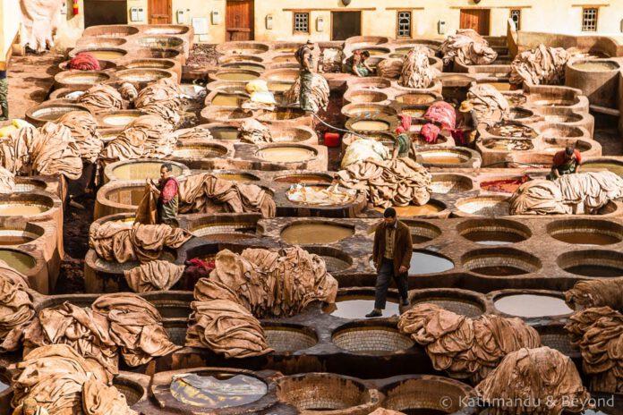 موضعگیری صنعت جهانی چرم در برابر مواد جایگزین