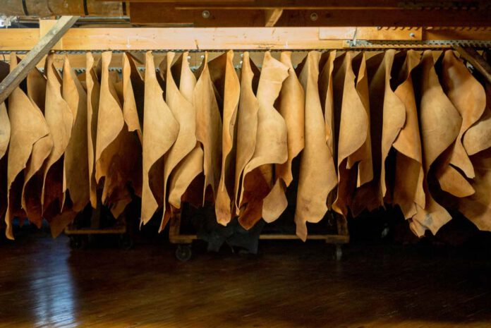 از صنعت چرم و کفش لبنان چه میدانید؟